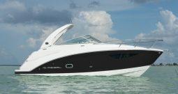 REGAL 26 EXPRESS Cruiser